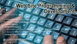 Mobile 1st Website Development and Design