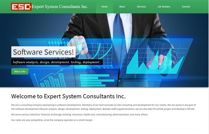 Expert System Consultants Inc.