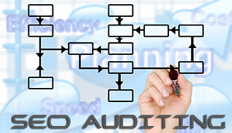 Website SEO Auditing Report